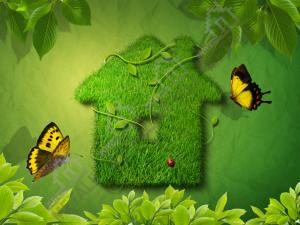 eco_princip